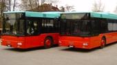 2 neue Busse